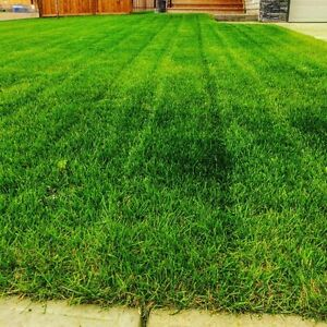Langdon/Chestermere Lawn Care & Landscaping