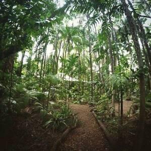 210 pw Large Troppo amazing rainforest home 10min by car to CBD Darwin CBD Darwin City Preview