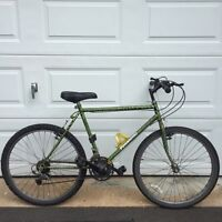 Crackle commuter city bike