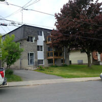 1 Bedroom apt, Sydenham and Bay Sts - downtown- Available July 1