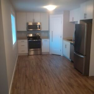 1 bedroom NEW suite 2 kms from UNBC Prince George