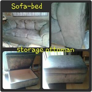 Pull-out Couch with Storage Ottoman
