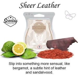 ISO 3 Scentsy Sheer Leather Bars and a 3 pack of 20 watt bulbs