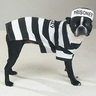 Casual Canine PRISON POOCH Dog Costume Hat Easy-On Easy-Off Pullover Style - Easy Prisoner Costume
