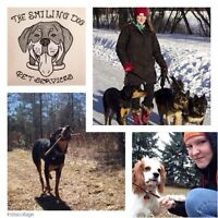Dog Walker Looking For New Clients - 2nd walk free!