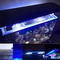 *PRICE LOWERED* SALTWATER AQUARIUM W/ EVERYTHING INCLUDED!