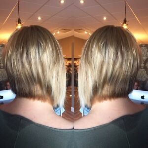 $50.00 off first time clients cut and colour  Strathcona County Edmonton Area image 1