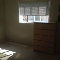 Beautiful Bright Room for Rent