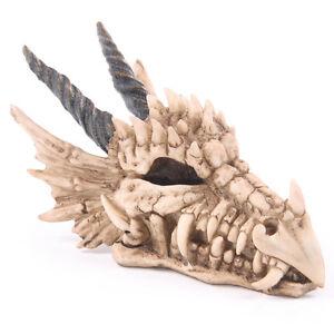 Original-caja-de-dinero-de-resina-con-craneo-por-dragon-3MEA