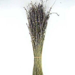 (5.69€/100g) Lavendel (Lavandin) Bund getrocknet herrlich duftend ca. 100g