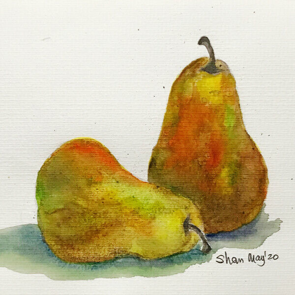 Hand painted original watercolor pears by Shan 18.5*26.5 cm