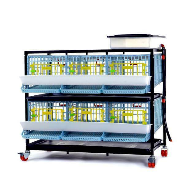 Quail Cage - 2 Layer (Easy to Clean, Hygienic & Effective Breeding)