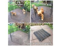 DOG, puppy, small animal enclosure, pen DOGS NOT FOR SALE!!!
