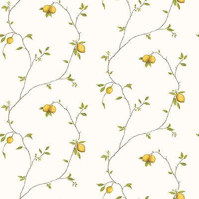 G12082 - Kitchen Recipes Lemons Yellow Galerie Wallpaper