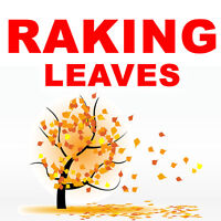 RAKING & FALL CLEAN UP