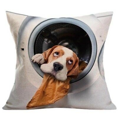 Dog in the Dryer pillow case cover 18x18