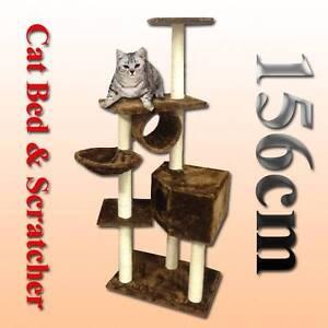 Sale sale 156cm cat pole tree scratching scratcher Riverwood Canterbury Area Preview