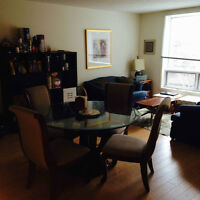 Beautiful 4 1/2 appartment in the heart of Montreal