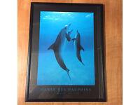 Danse Des Dauphins framed Print