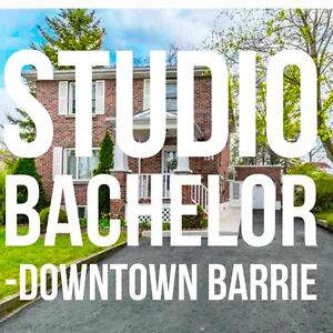 $995 All Inclusive - Downtown Barrie