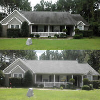 @@@@@@@@@@ROOF CLEANING & GUTTER CLEANING
