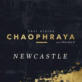 Team Members   New Opening   Chaophraya