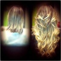Hair Extensions, Spring Special 350$, (oxahair.com )