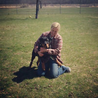 Dog Boarding with Training Boot Camp