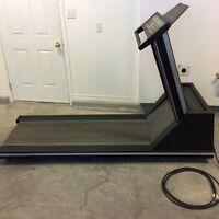Quinton Commercial Treadmill