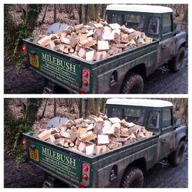 Large truck load of seasoned logs! For wood burner or open fire