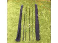 Carp rods x 2