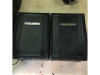 Two Carlsbro Speakers! **Open to Offers**