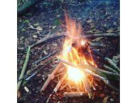 Fireflies forest school