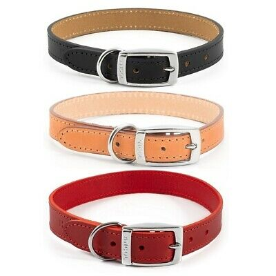 Ancol Heritage Dog Collar Puppy Handsewn Strong Quality Leather in Black Red Tan