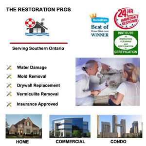 Attic and Basement Mold, Asbestos and Vermiculite Removal and In