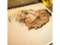 Commission artist available to paint pets, family or anything else desired