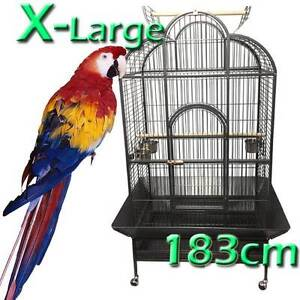 Jan sale XL bird cage 1.83M aviary Riverwood Canterbury Area Preview