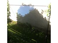 """Double glazed unit, glass only, 74"""" x 43"""", free to collect"""