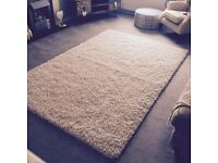 Large cream wayfair rug