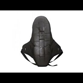 Dianese Back Protector