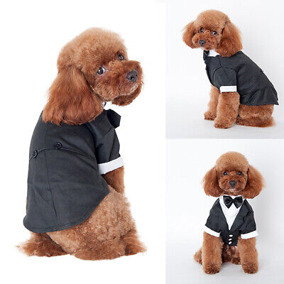 Cat Tuxedo Outfit (  Pets Dog Cat Wedding Suit Puppy Kitten Tuxedo Tie Outfits Clothing)