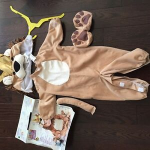 Toddler baby boy 12 month lion costume