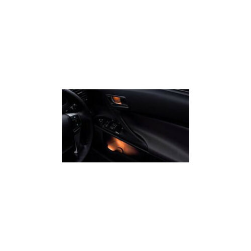 2009-2010-TOYOTA-NEW-MARKX-MARK-X-DOOR-ILLUMINATION-KIT