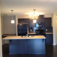 Brand New 2 Bedroom 2 Bathroom Windermere Condo For Sale or Rent