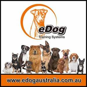 Dog Remote Training Collar Anti Bark Control Dog Electric Fence Sydney City Inner Sydney Preview