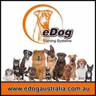 Dog Remote Training Collar Anti Bark Control Dog Electric Fence