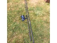 Carp rod and reel