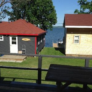 Cottage for rent on scenic Rice Lake Peterborough Peterborough Area image 9
