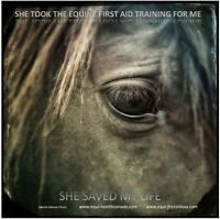 """EQUI-HEALTH CANADA """"I CAN HELP"""" EQUINE 1ST AID COURSE"""
