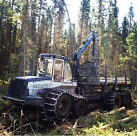 WANTED-Logging Operators